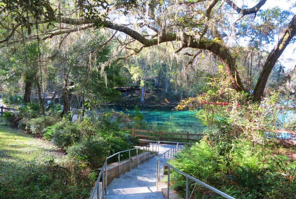 Tiny Home Parks Florida