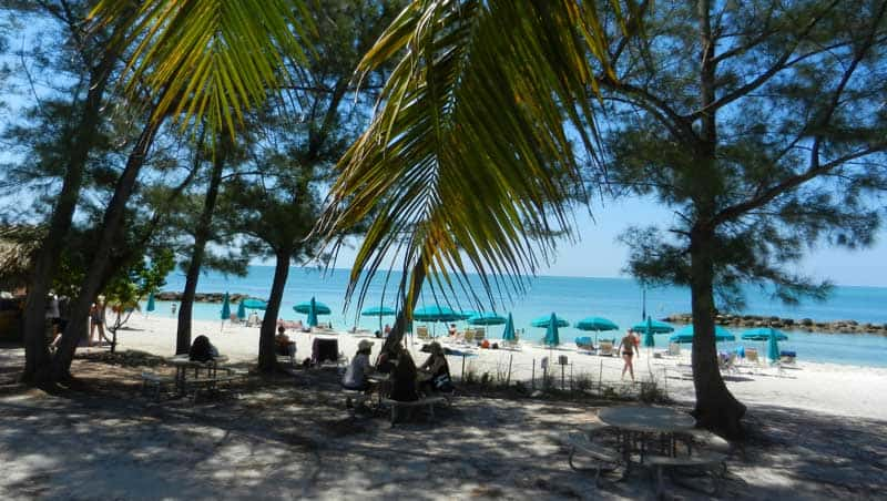 The beach is well shaded.