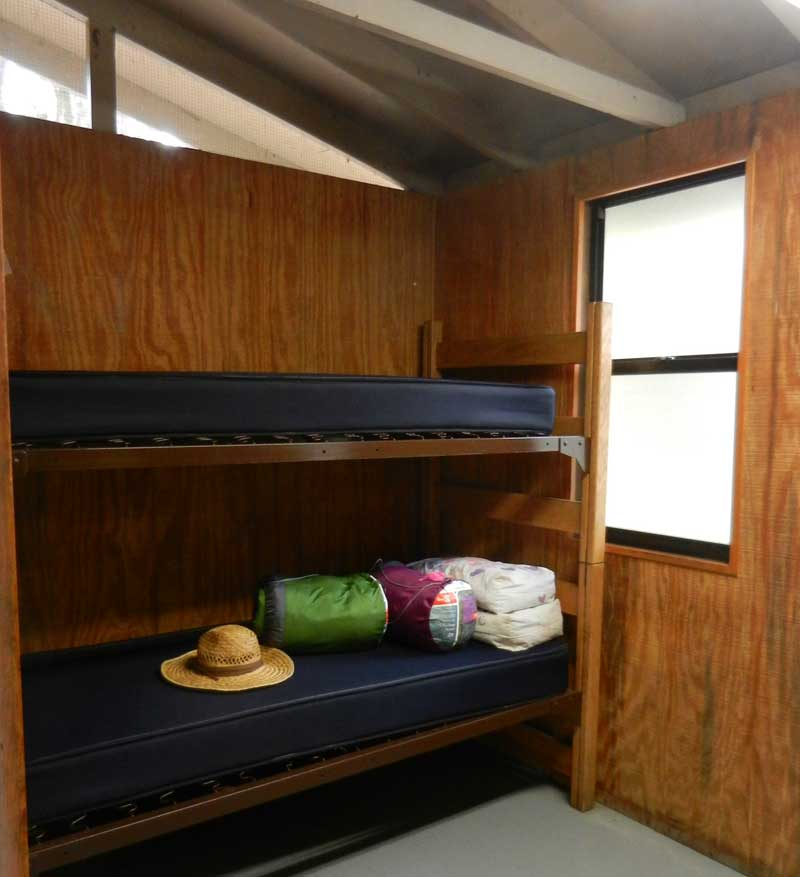Bunk beds in cabin at Hontoon Island State Park