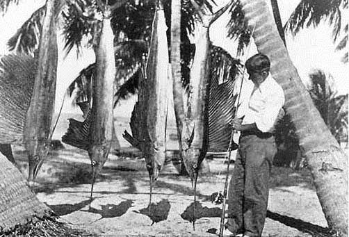 Zane Grey with his catch at the Long Key Fishing Camp