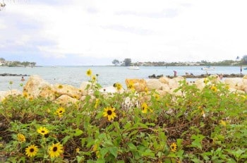 Peanut Island, with a view of the Palm Beach Inlet.