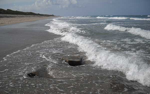 John D MacArthur Beach State Park (Photo: Bonnie Gross)
