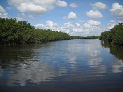 Alabama Jacks canal, Florida Keys