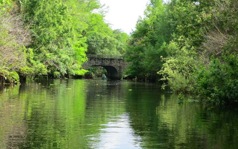 loxahatchee at bridge Florida's best county parks are hidden treasures
