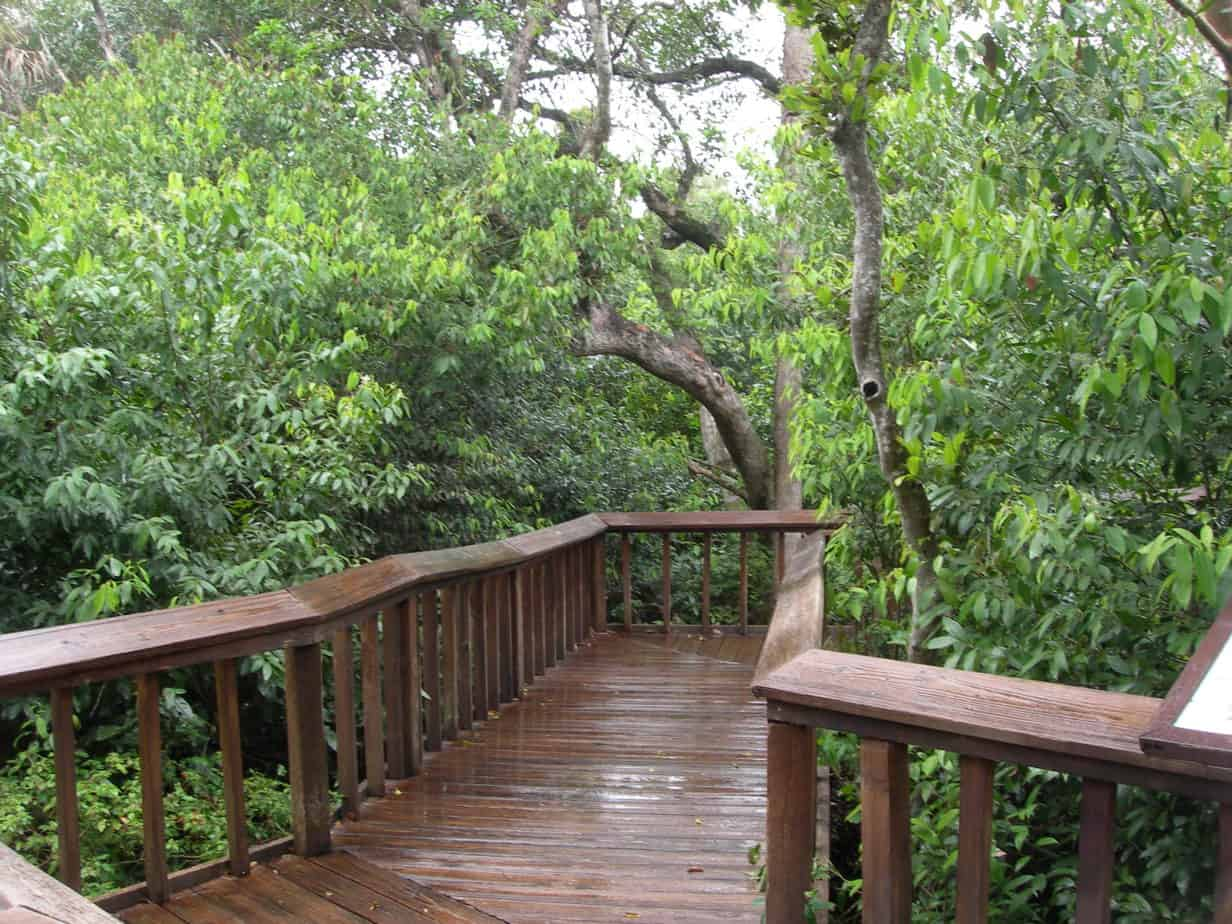 trail Find Florida trails on a new state website