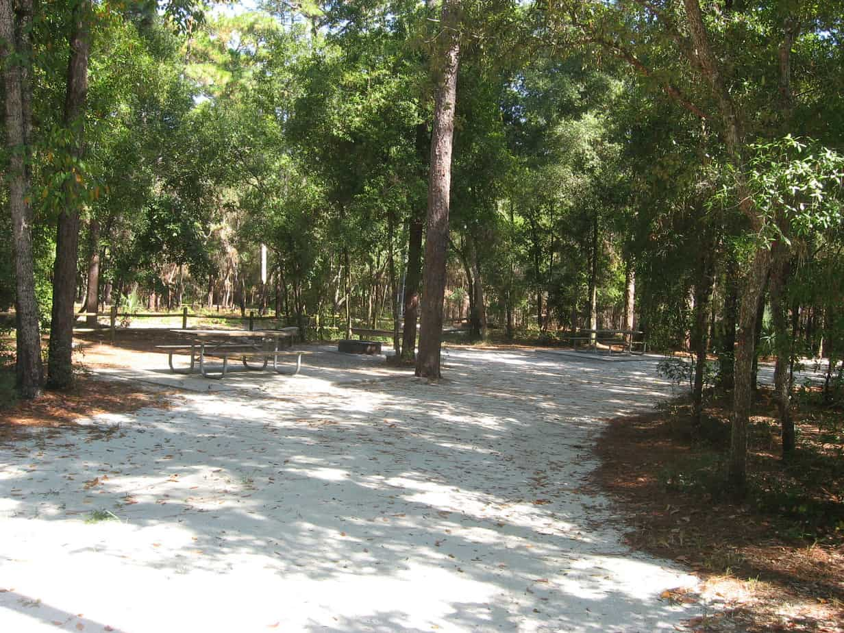 Camping at Kelly Park: Family/Group Site #17