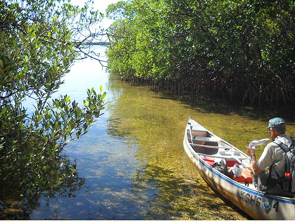 Mound Key Archaeological State Park kayak landing