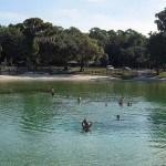 Swimmers enjoy Lithia Spring