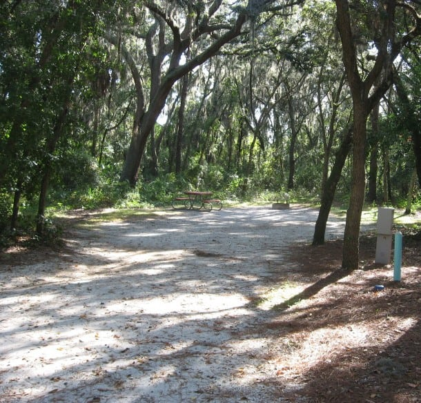 Site 25 at Lithia Springs Park