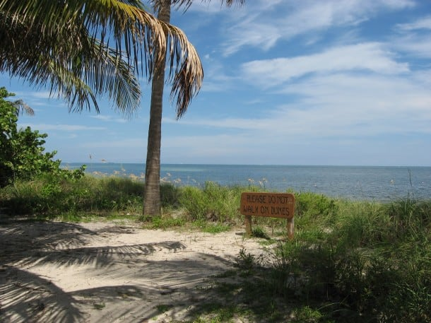 The dunes at the north end offer quiet hideways on Crandon Park Beach