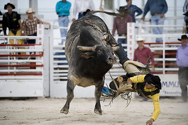 homestead rodeo January Events in Florida