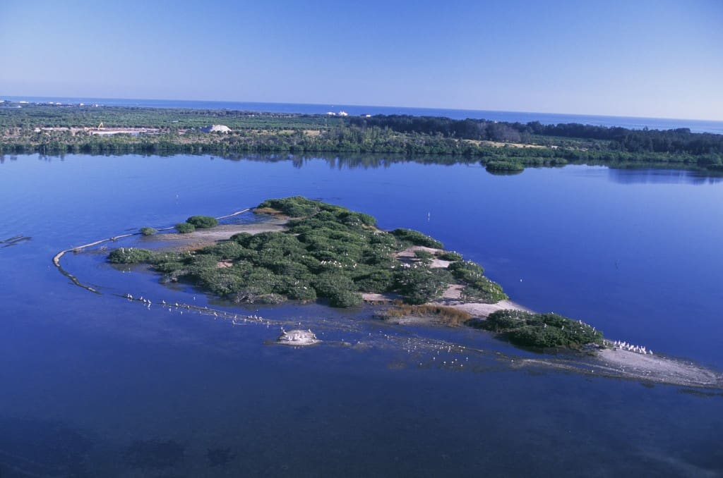 Aerial of Pelican Island National Willdife Refuge Flock to a wonderland of birds on tiny Pelican Island