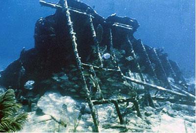 Snorkel Biscayne National Park: The Mandalay shipwreck. Photo by Brenda Lazendorf, National Park Service