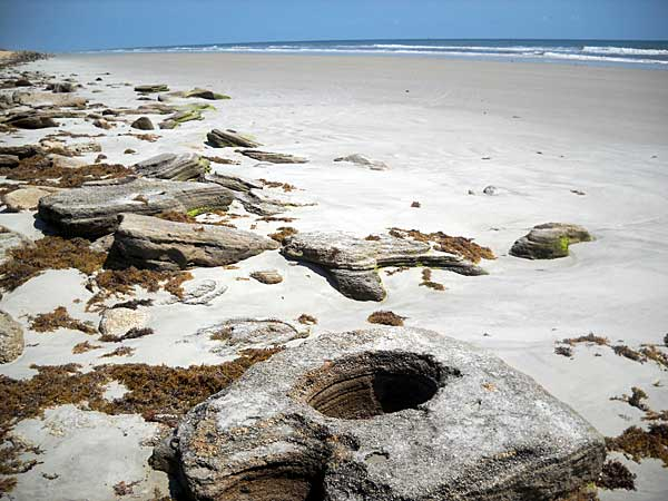 Water has created fanciful swirls in the coquina rocks at Washington Oaks beach in Palm Coast.