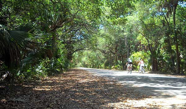 The main road at Washington Oaks State Park is the original two-lane A1A, a great place to bicycle. (Photo: Bonnie Gross)