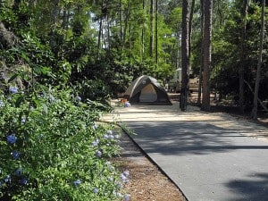 Fort Wilderness campsite