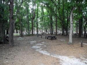 high ham camp 2 Ancient oaks caress the soul at Highlands Hammock
