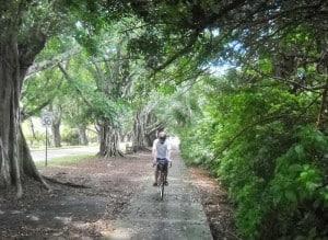 Jupiter Island bike route along Bridge Road