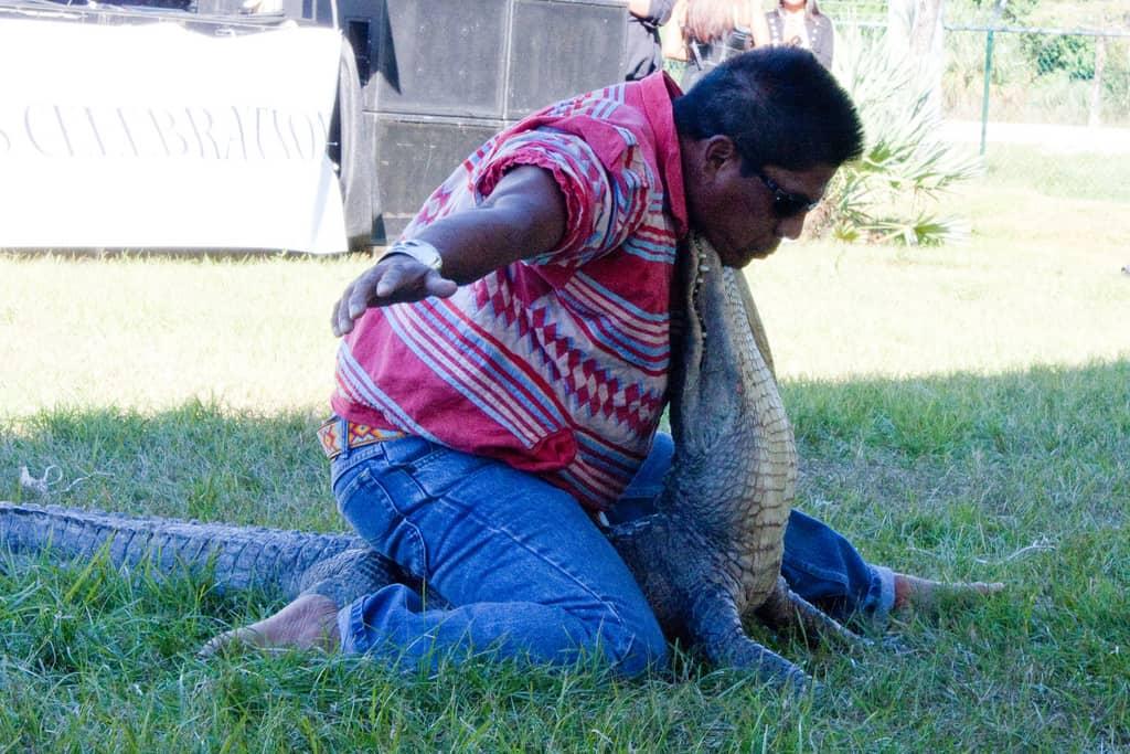 Alligator wrestling at Seminoles' 2010 American Indian Arts Celebration by Heather Culligan