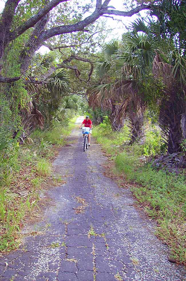 Jonathan Dickinson State Park Old Dixie now a trail