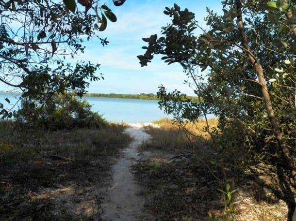 Path to a sandy beach on Munyon Island, MacArthur Beach State Park