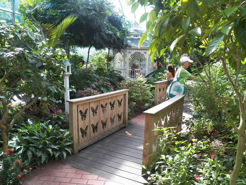 Key West butterfly garden gazebo in the garden
