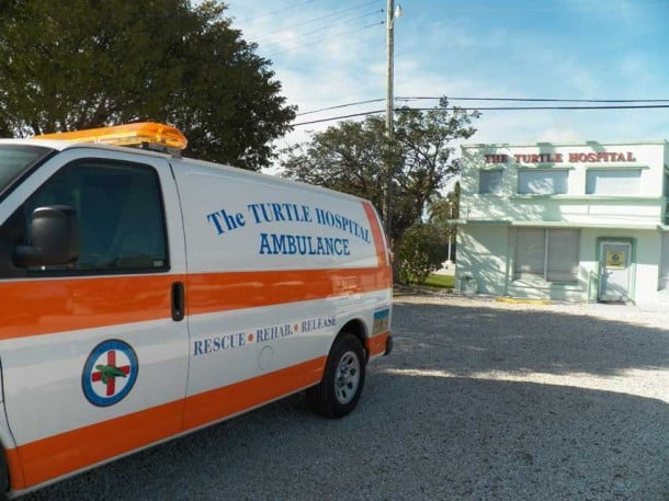 The turtle ambulance at the Turtle Hospital, Marathon, Florida