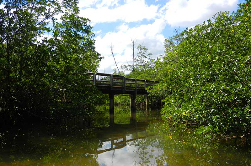Kayak trail under bridge at St. Lucie Inlet Preserve State