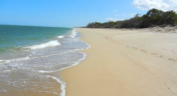 St. Lucie Inlet Preserve State Park can only be reached by boat, but it's worth the trouble. It's one of the most secluded and quietest beaches in Florida. (Photo: Bonnie Gross)