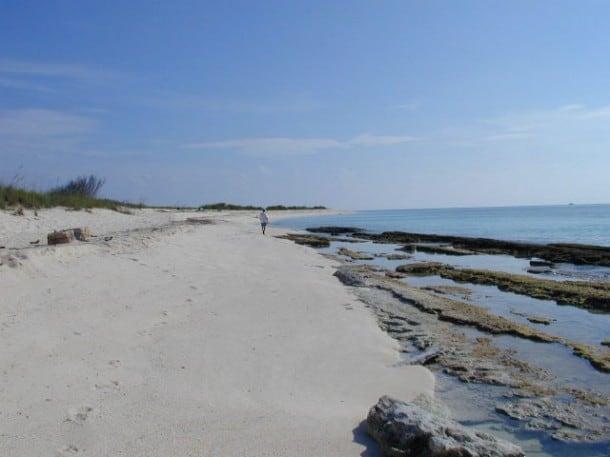 The beach at Loggerhead Key in the Dry Tortugas