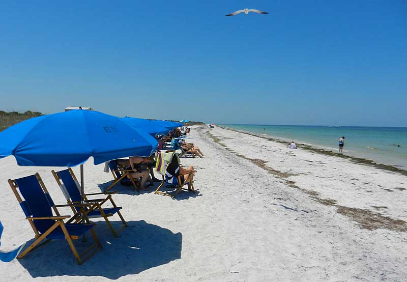 Umbrellas can be rented at the main beach on Caladesi Island State Park. (Photo: Bonnie Gross)