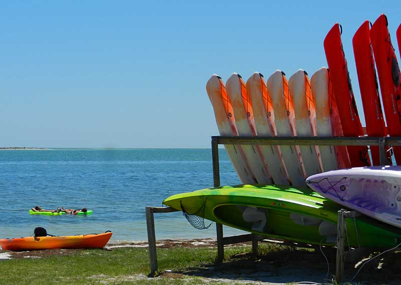 Kayak rentals for Caladesi Island State Park are on the causeway to Honeymoon Island. That's the shore of Caladesi Island is distance. (Photo: David Blasco)
