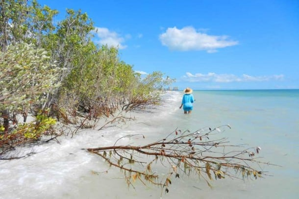 Florida parks: Not a soul in sight. Tigertail Beach in Marco Island is unspoiled and uncrowded. Photo FloridaRambler.com