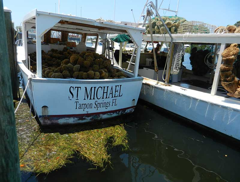 SSponge fishing boat in Tarpon Springs on boat trip that includes stop on Anclote Key.