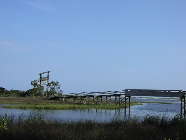 Boardwalk and observation tower at Florida's Big Lagoon State Park