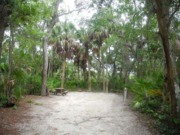 tomoka campsite Tomoka State Park: Gateway to the Ormond Scenic Loop