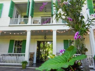 Audubon House orchids e1354579089815 Key West Audubon House: Fascinating characters, enchanting spot