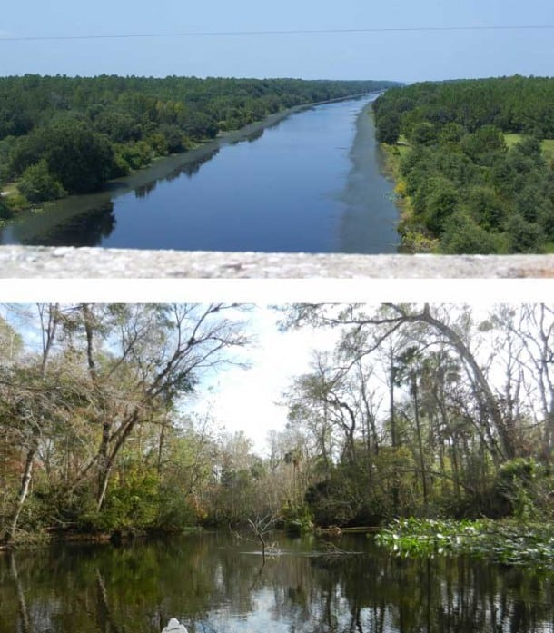 At top, a portion of the Cross Florida Barge Canal that was completed, representing what the Ocklawaha could look like today. Below, what it actually looks like today.