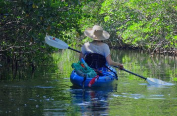 Kayaking the Florida Keys through a mangrove tunnel off Key Largo.