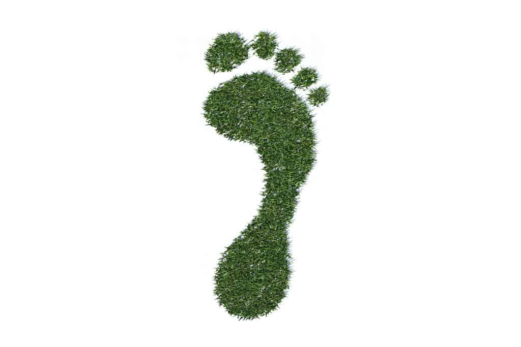 carbon footprint stockmonkeyscom My carbon footprint: 'Offsetting' a year of travel for Florida Rambler
