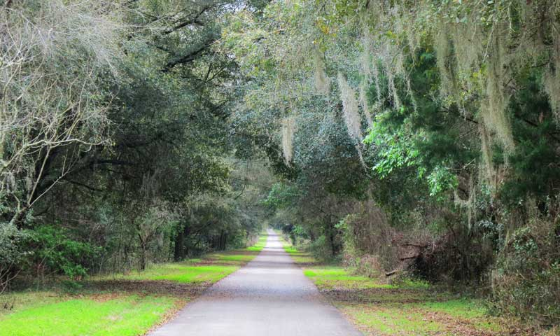 withlacoochee trail vista Withlacoochee State Trail: This might be Florida's best bike trail