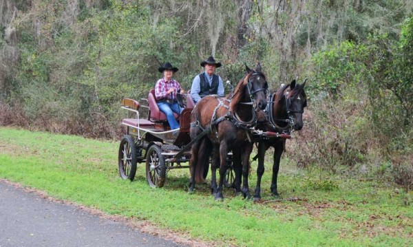 A scene along the Withlacoochee State Trail near Floral City.