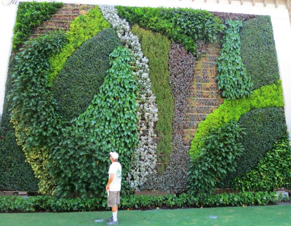 The Living Wall, a vertical garden on Worth Avenue in Palm Beach island.