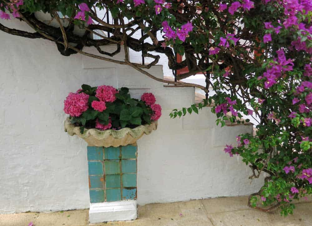 The walkways and courtyards are full of flowers on Worth Avenue in Palm Beach island.