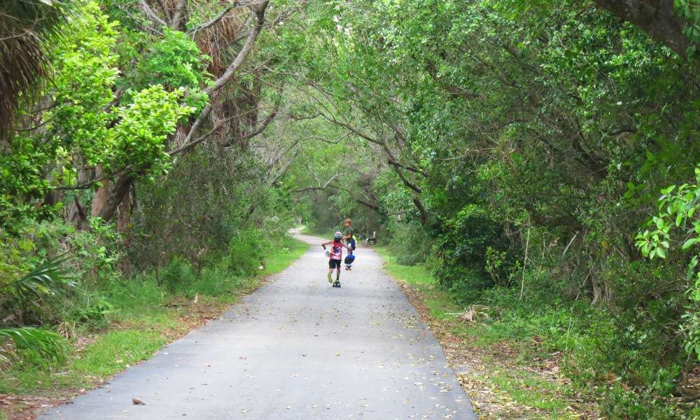 The paved bike path at Bill Baggs Cape Florida State Park on Key Biscayne.