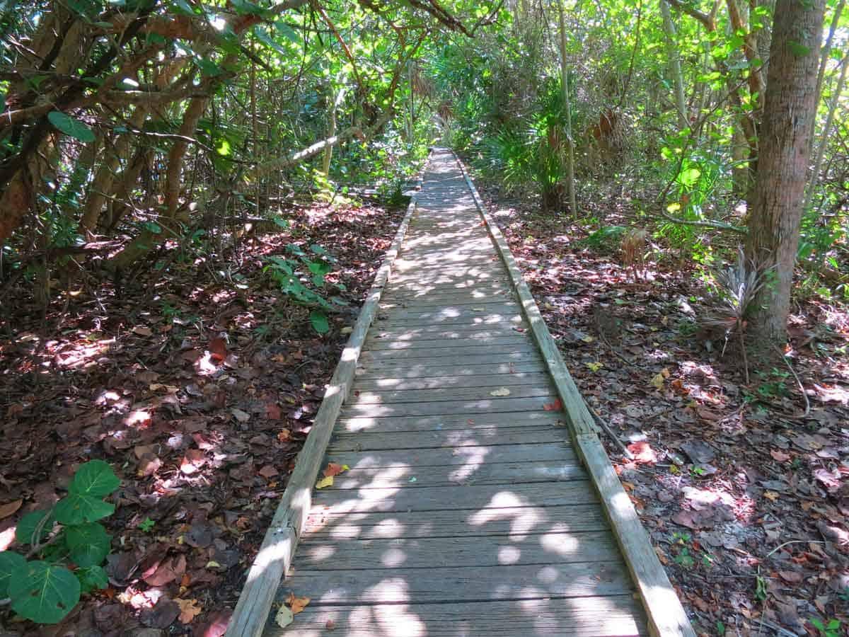 A boardwalk trail at Delnor-Wiggins Pass State Park