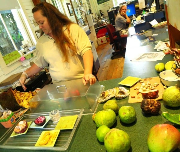Samples of exotic fruits you can taste in visitor center at Fruit and Spice Park in the Redland.