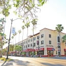 venice downtown 5 things to discover near Florida's Venice