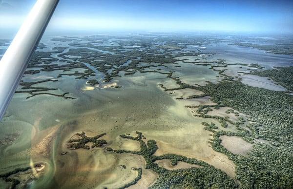 5 Great Ways To Explore Florida S Ten Thousand Islands