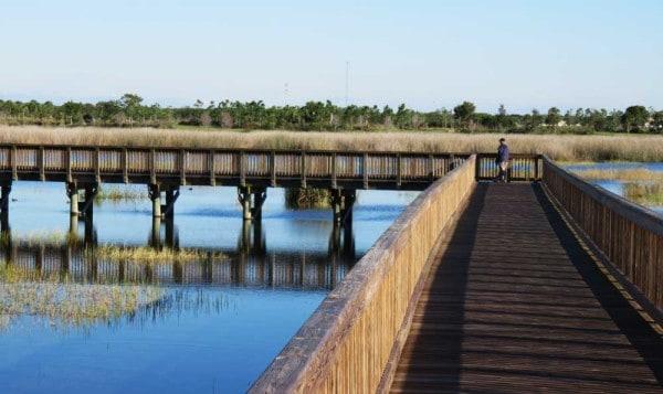 Boardwalk at Wellington Environmental Preserve